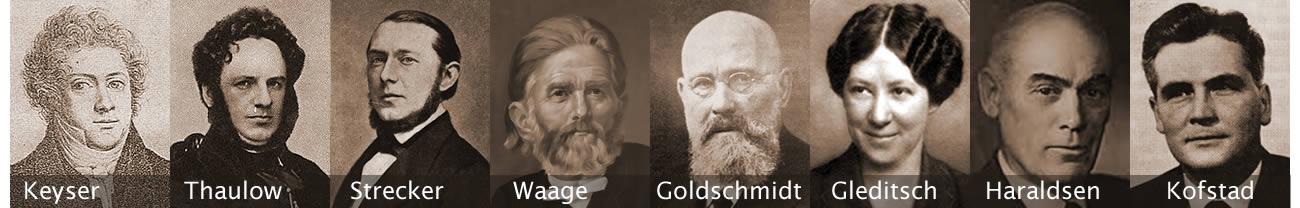 Faggruppe for kjemiens historie